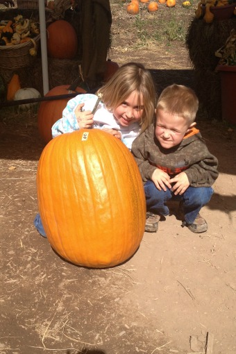 2nd Largest Pumpkin