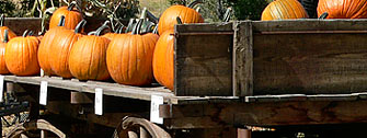 Pumpkins at the Covered Bridge »